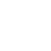 bda-home-icon-turtle-white