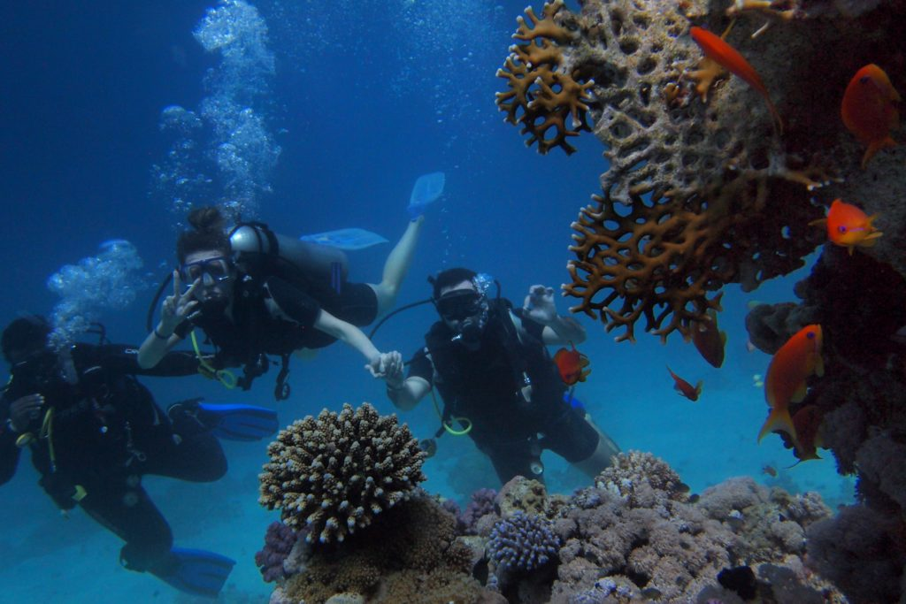 DIVE EVERYWHERE BEGINNER PACKAGE - 3 days / 2 nights Open Water Course
