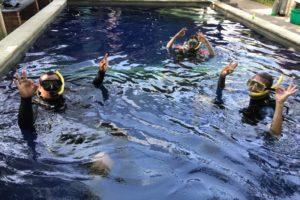 try diving in pool 2