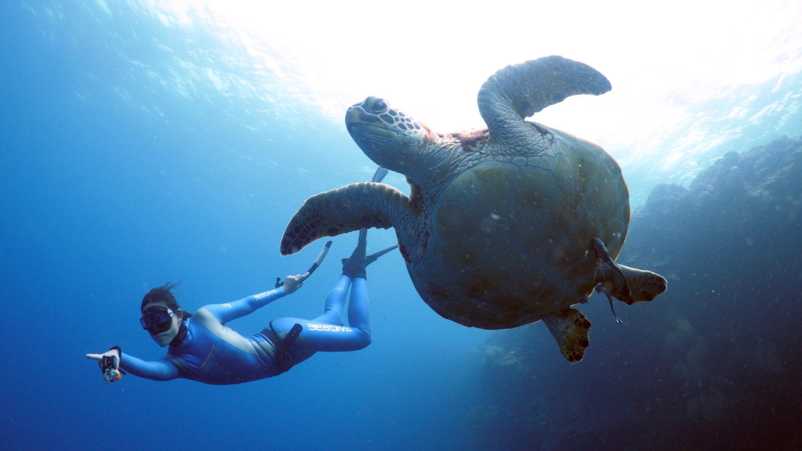 Yoga Freediving Retreat